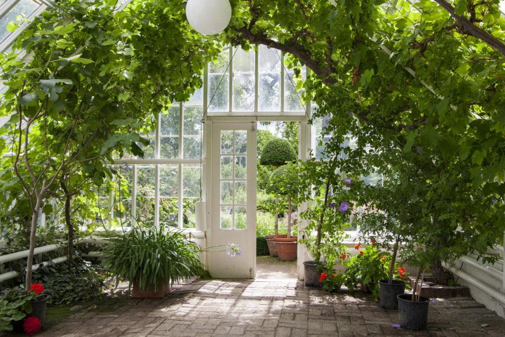 Wintergarten mit Limettendecke