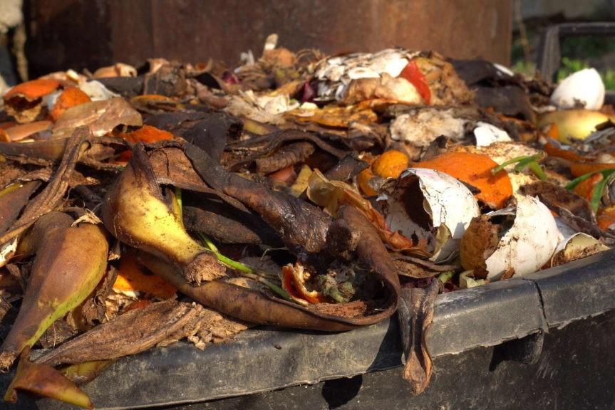 Gemüsereste auf Kompost verrottend