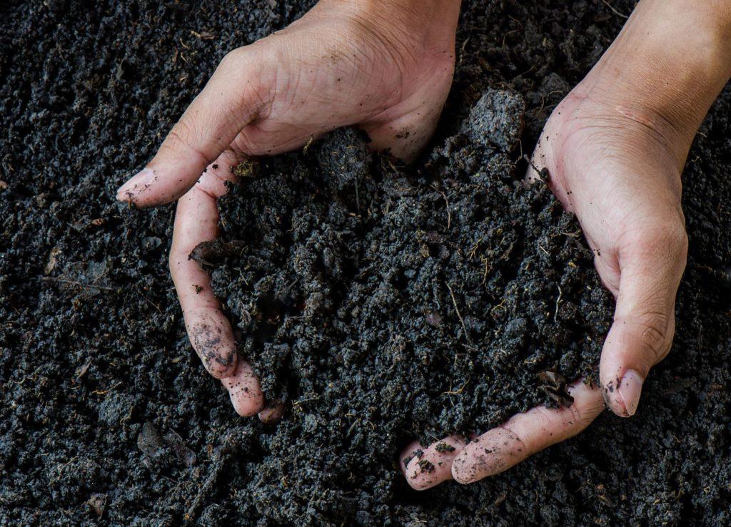 Komposterde-Händen-gehalten