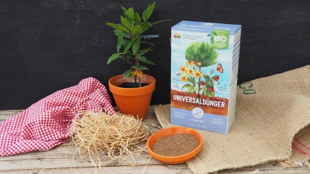 Lorbeer-Pflanze neben Plantura-Universaldünger