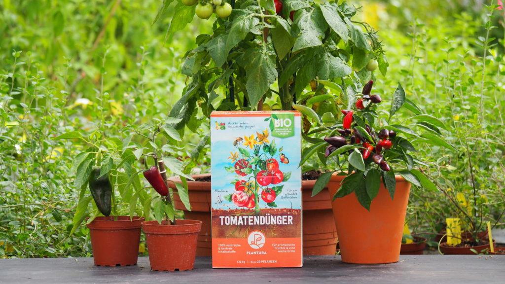 Plantura Bio-Tomatendünger vor einer Tomatenpflanze
