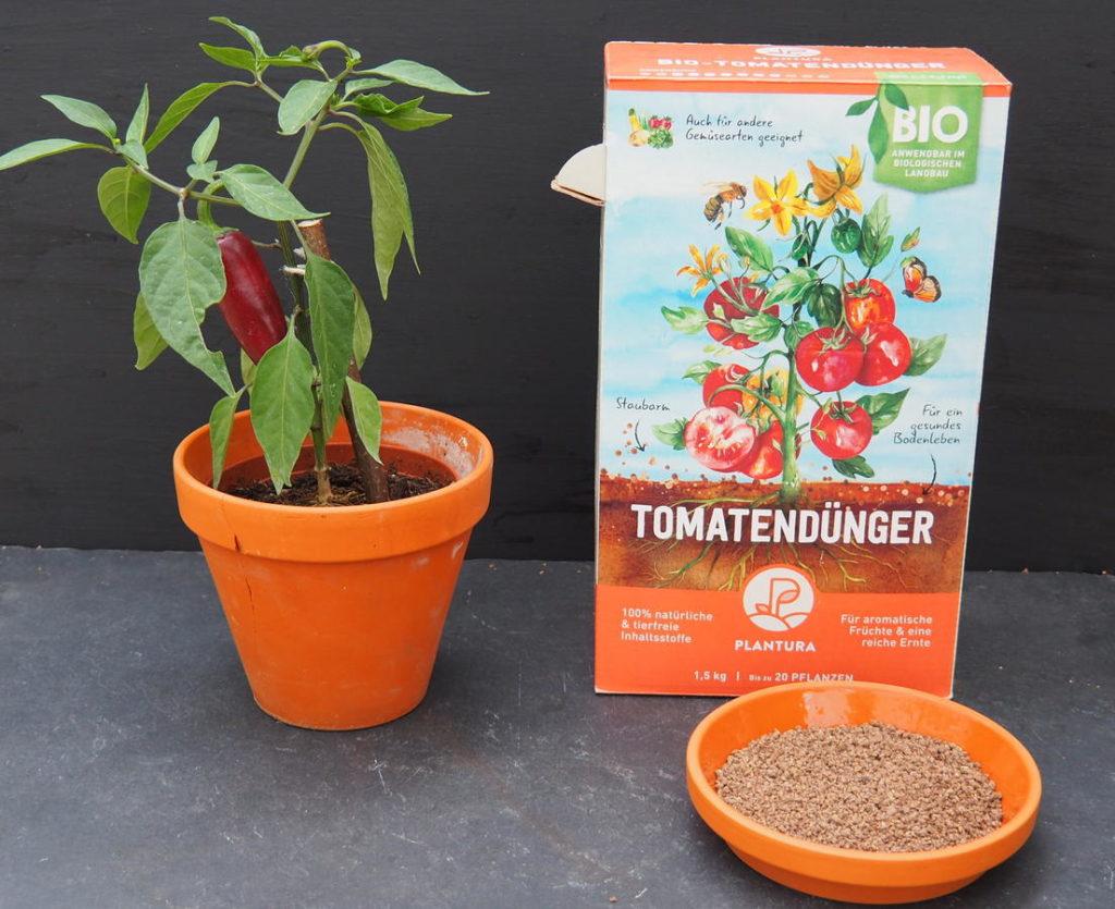 Plantura Bio-Tomatendünger neben einer Chilipflanze