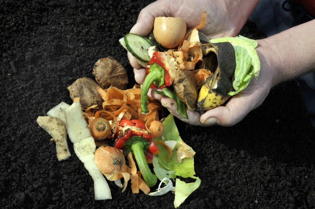 Gemüsereste auf dem Kompost