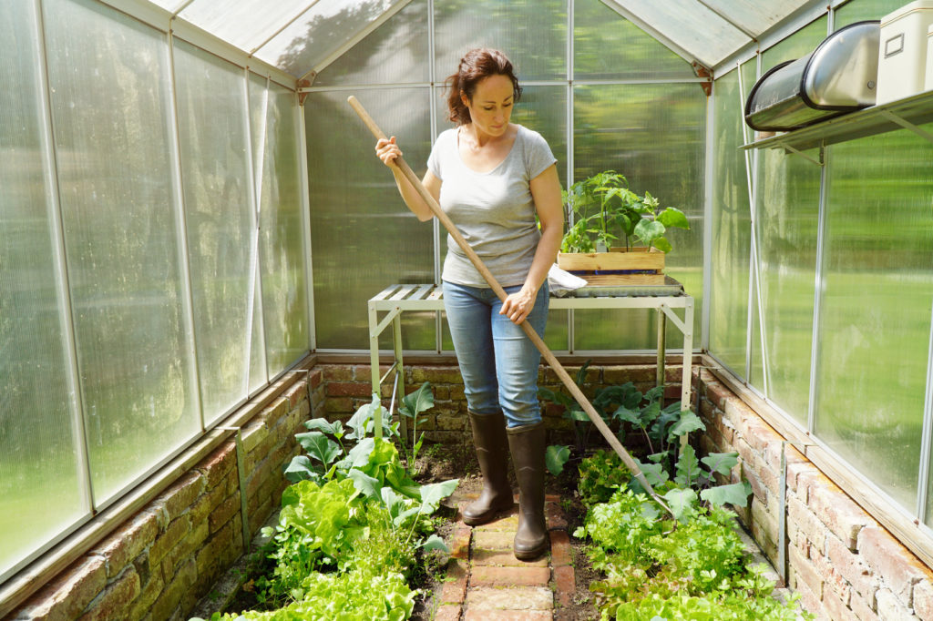 Woman in a greenhouse in the garden at gardening and plant care