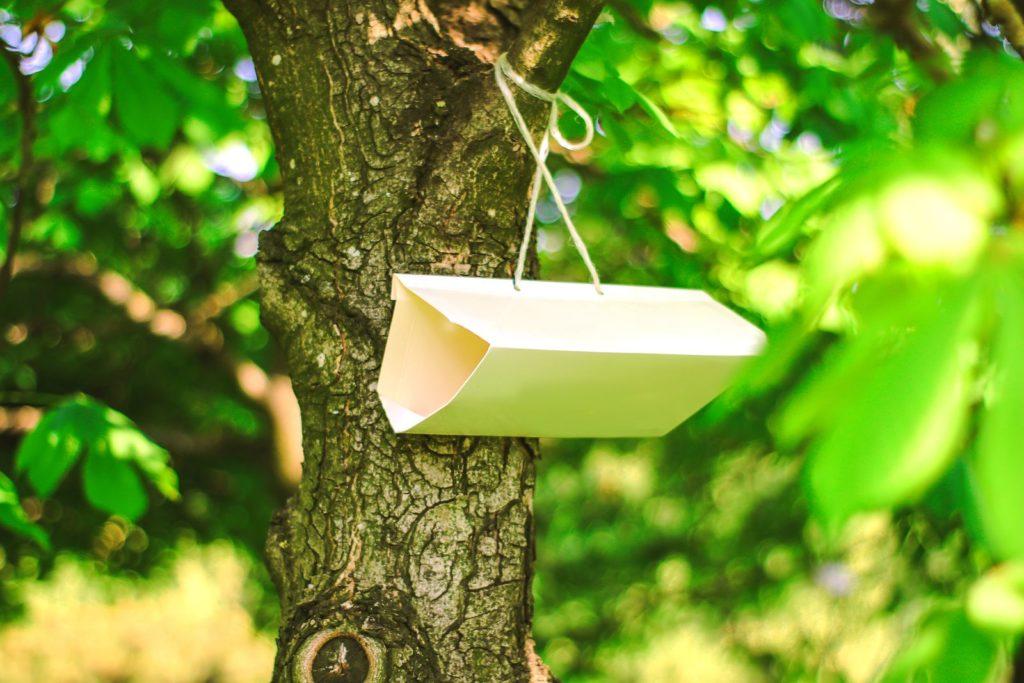 Insektenfalle hängt an einem Baum im Garten