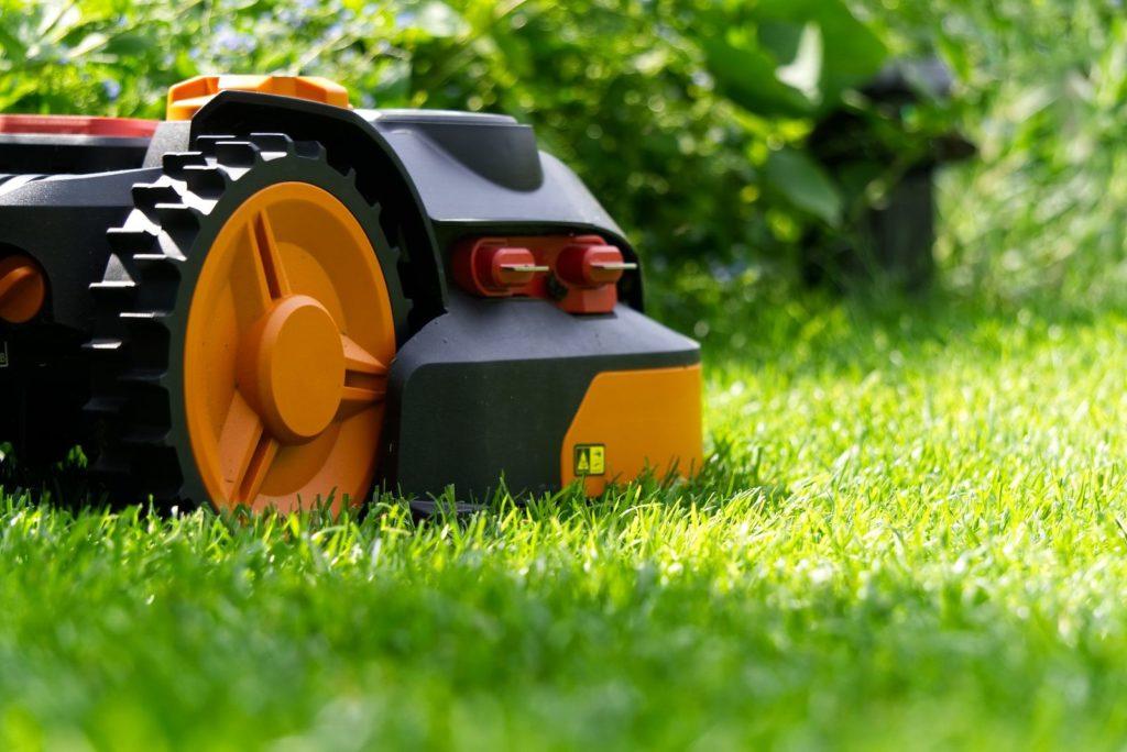 Rasen wird mit Mähroboter gemäht