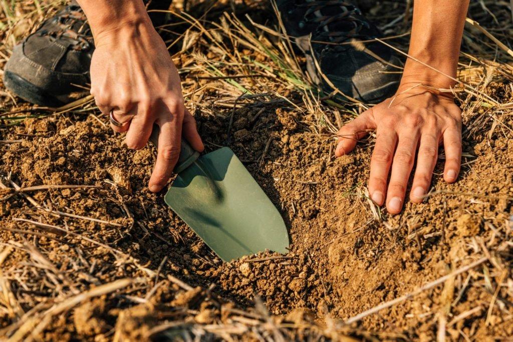 Mit einer Schaufel wird im Boden gegraben