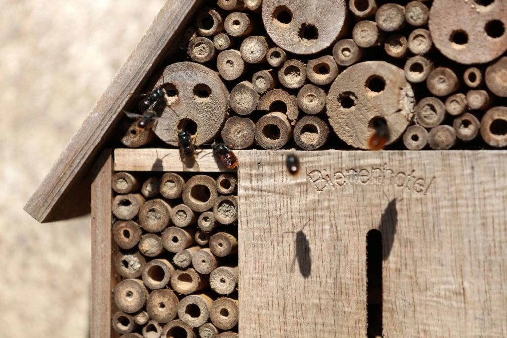 Bienenhotel aus Holz