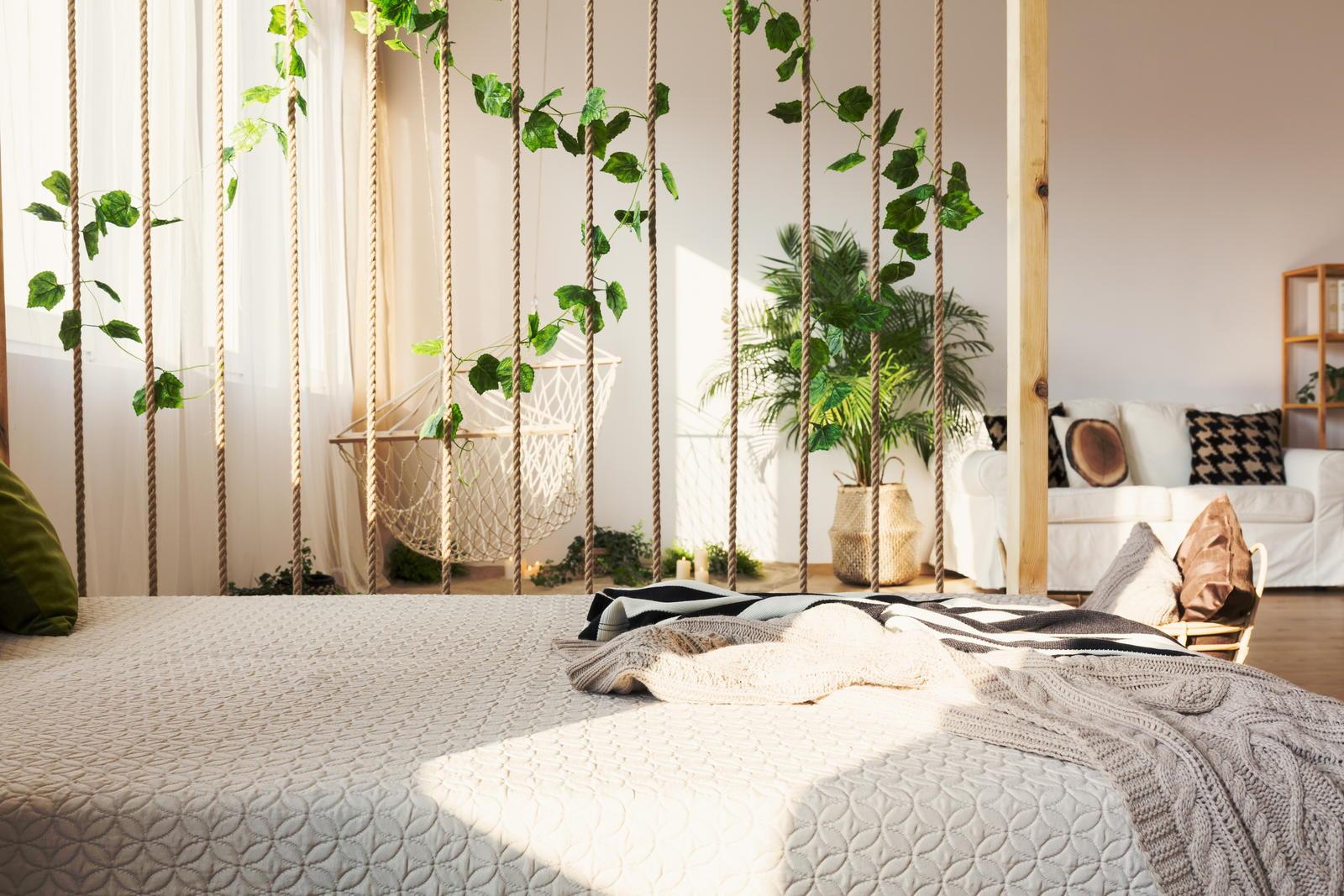 Efeu als Zimmerpflanze: Alles zum Pflanzen & Pflegen von Efeu im