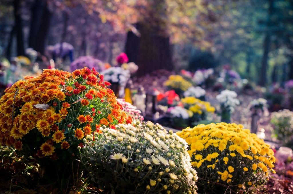 Herbstblumen auf Grab