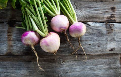 Mairübe: Experten-Tipps Zu Anbau, Pflege & Ernte