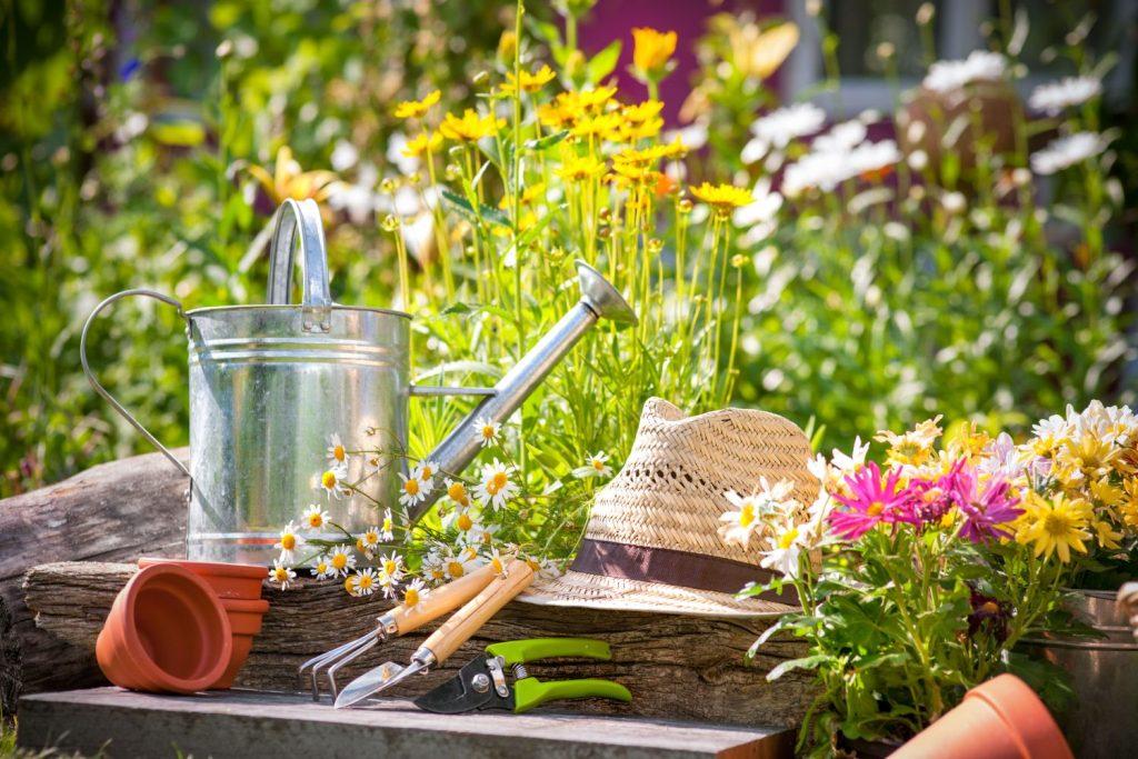 Naturgarten mit blühenden Blumen und Gartenwerkzeug