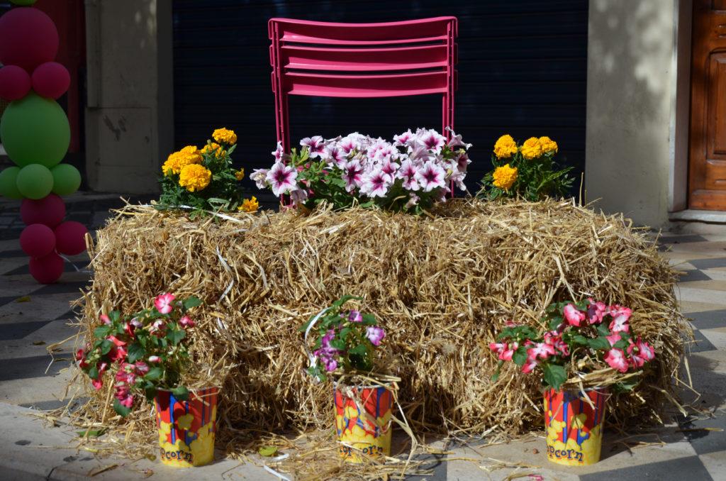 Verschiedene Blumen auf Stroh