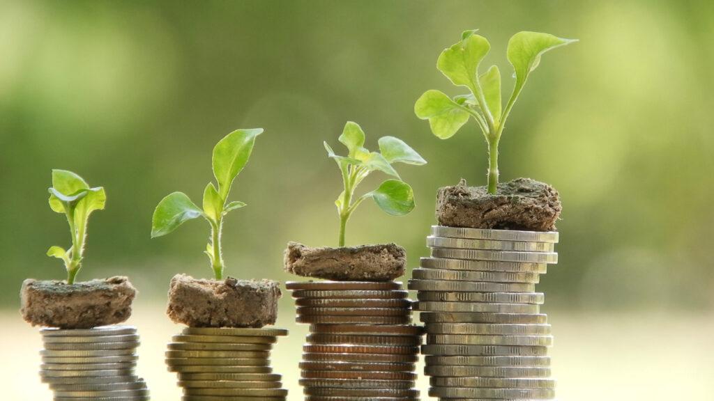 Pflanzen auf Kleingeld