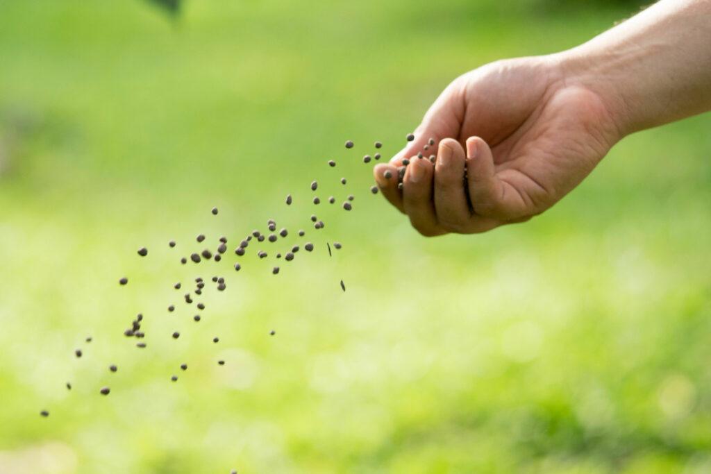 Person verteilt Bodenaktivator im Garten