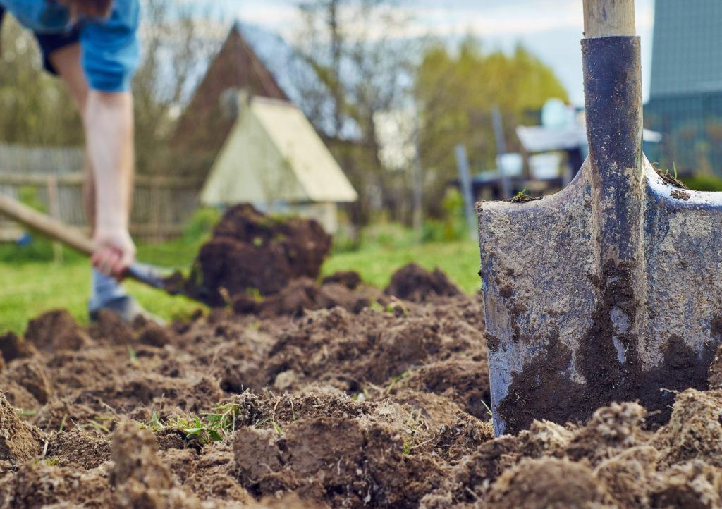 Erde umgegraben in einem Garten mit Spaten und Schaufel