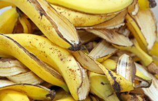 Bananenschale Als Dünger: Ist Das Sinnvoll?