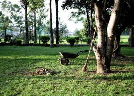 Garten Naturnah Gestaltet