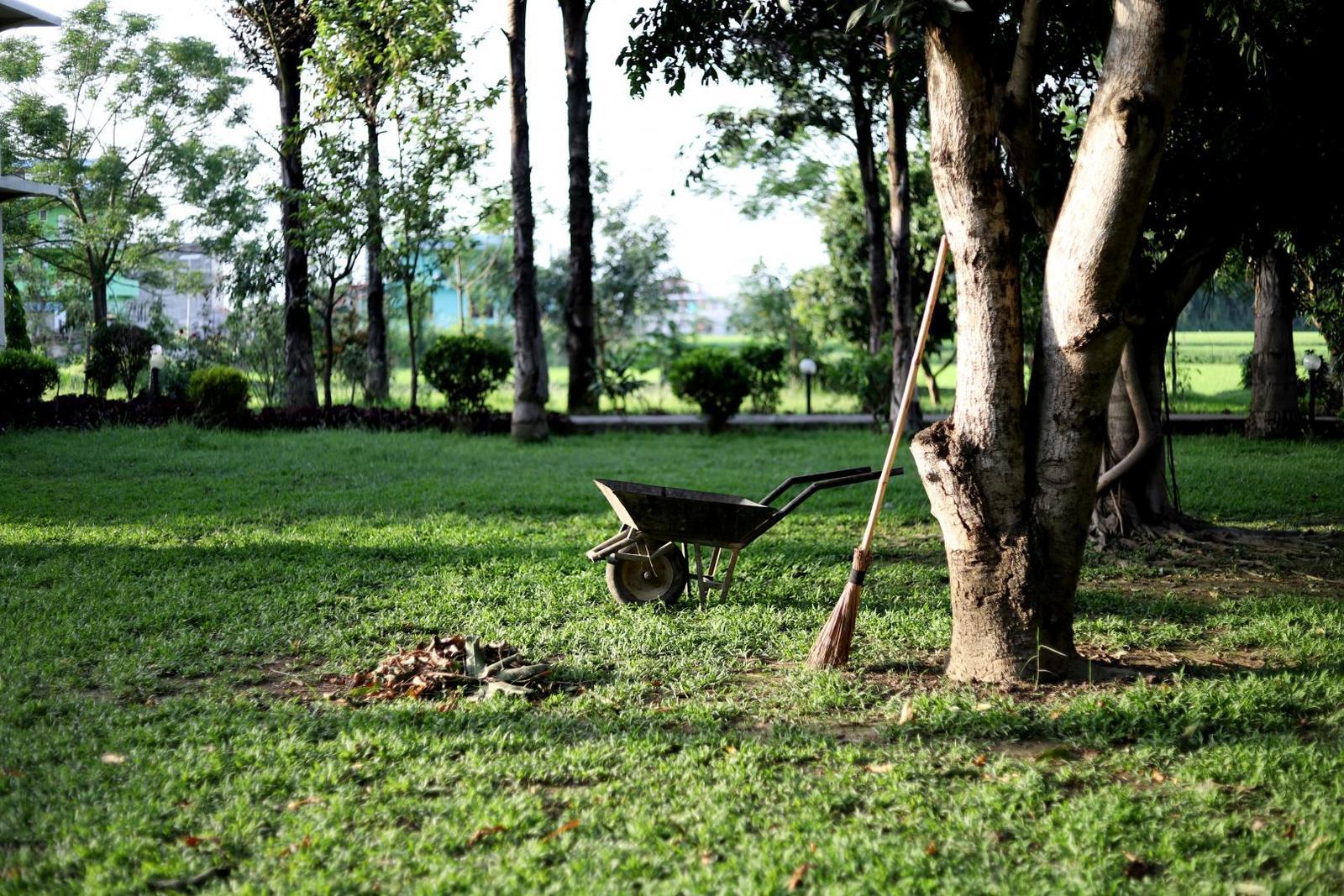 Naturnahe Gartengestaltung Was Gilt Es Zu Beachten Plantura