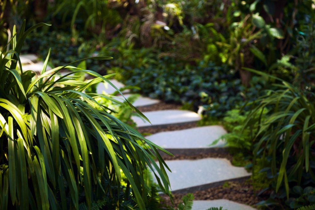 Weiße Steine als Weg in kleinem Garten