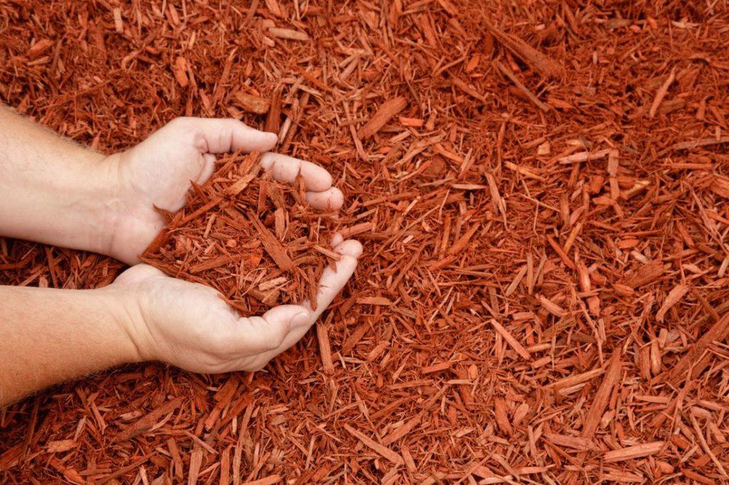 Mulchschicht im Garten