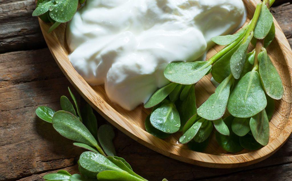 Portulak als Salat mit Dip