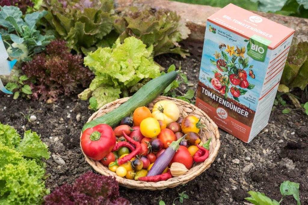 Tomatendünger mit Schale voller Obst und Gemüse