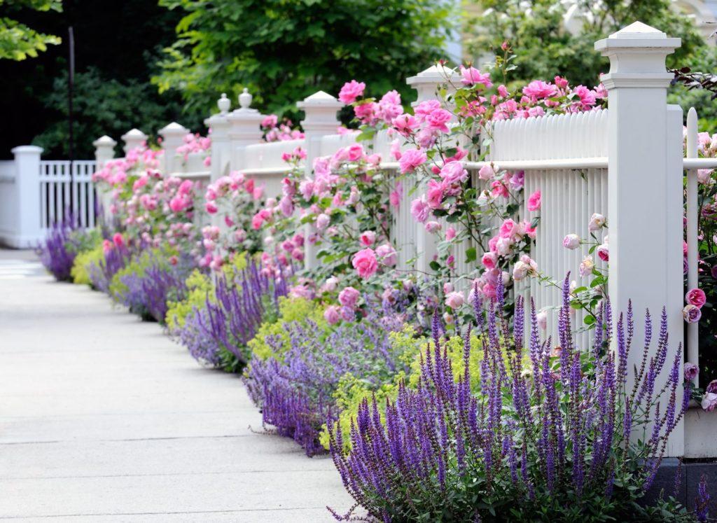 Kleinen Vorgarten Gestalten 25 Inspirierende Beispiele 13 9
