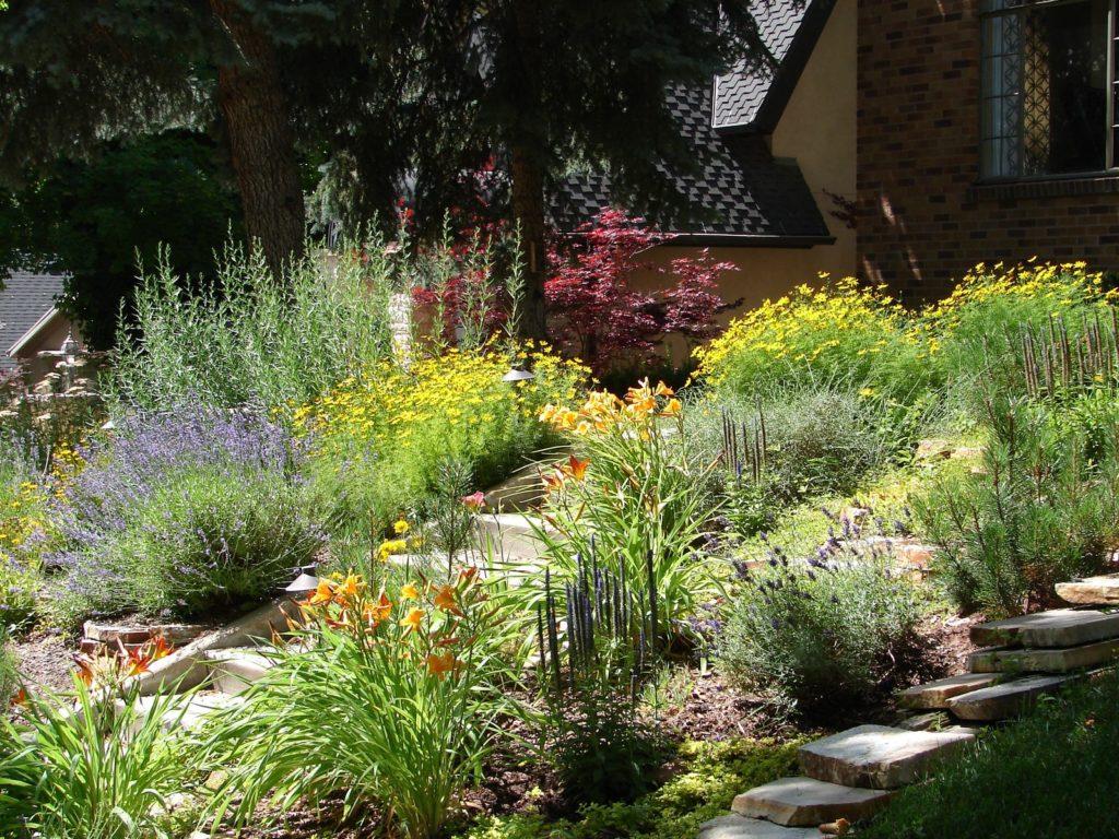 Wassersparende Gartenplanung