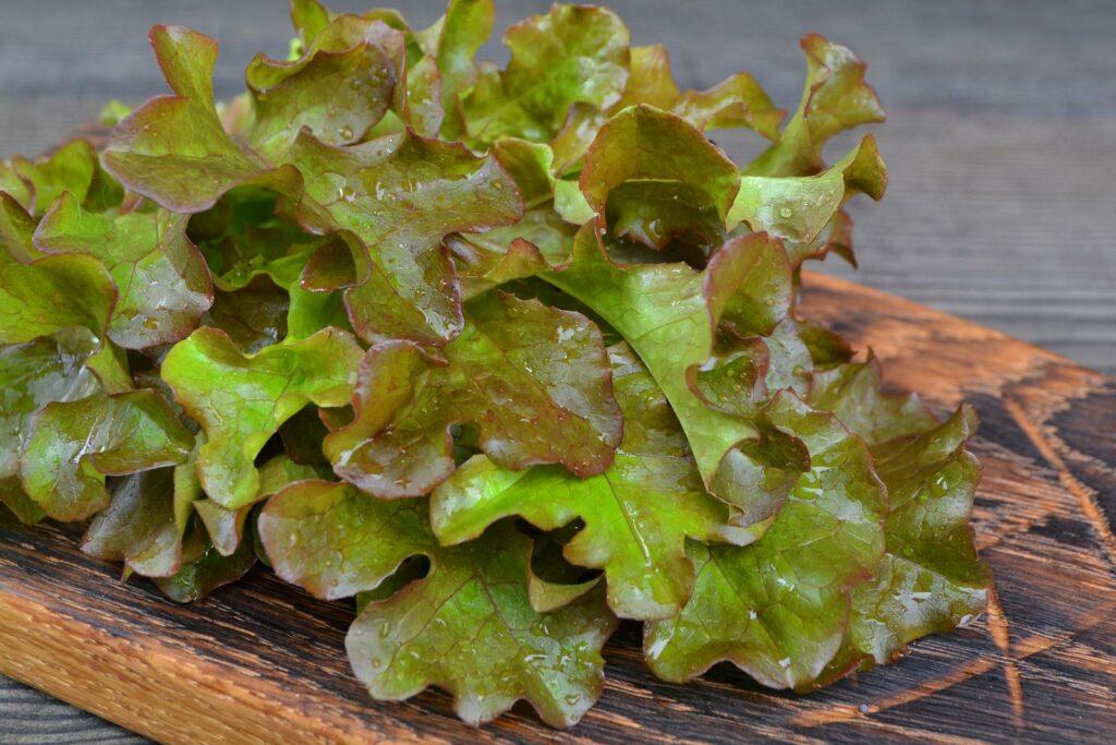 Eichblatt auf Holzbrett liegend