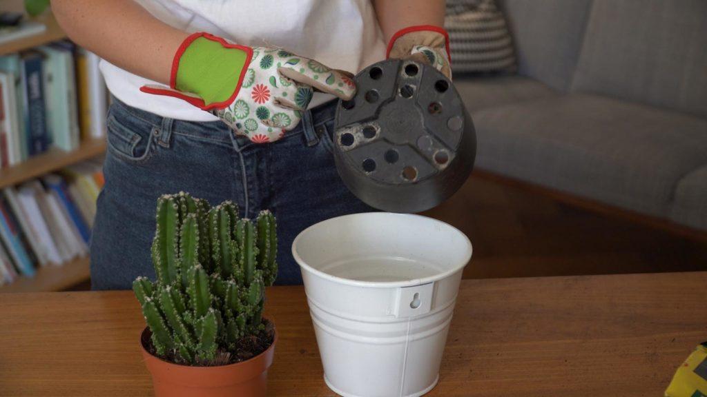 Frau zeigt Topf mit Abflusslöchern