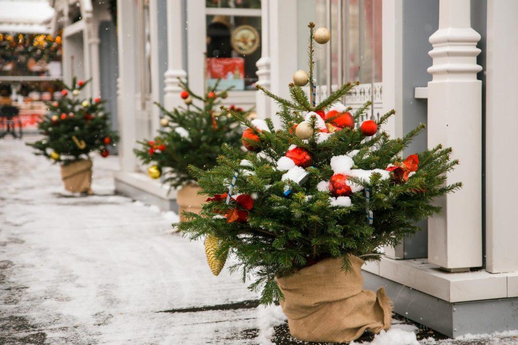 Kleine Weihnachtsbäume im Topf mit Schnee