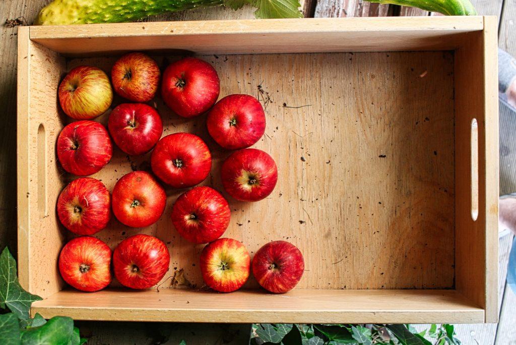 Äpfel liegen in Holzkiste