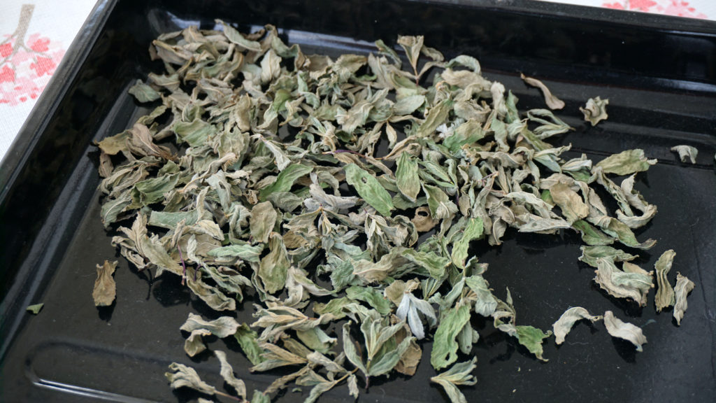 Getrocknete Minzblätter auf Backblech