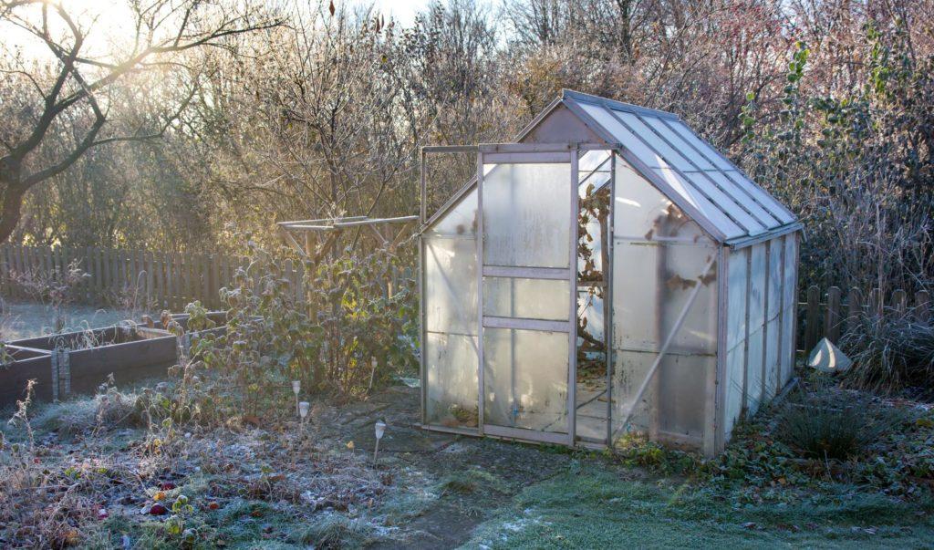 Gewächshaus im Garten bei Frost