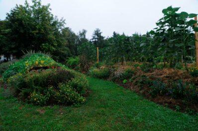 Hügelbeet: Alles zum Anlegen & Bepflanzen