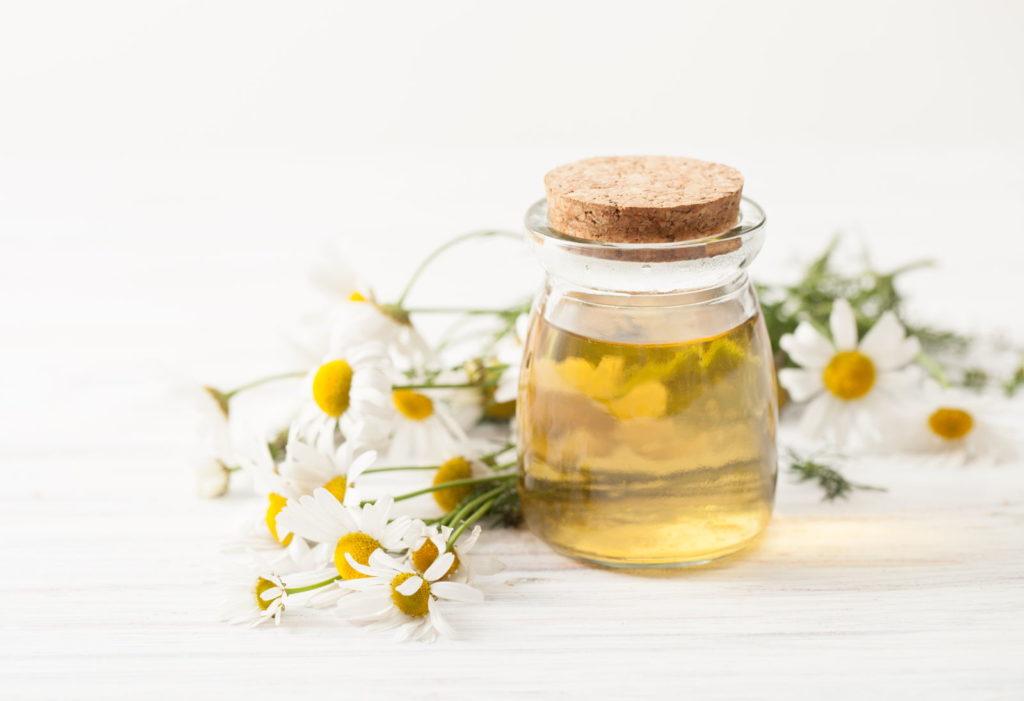 Kamillen-Sud in Flasche