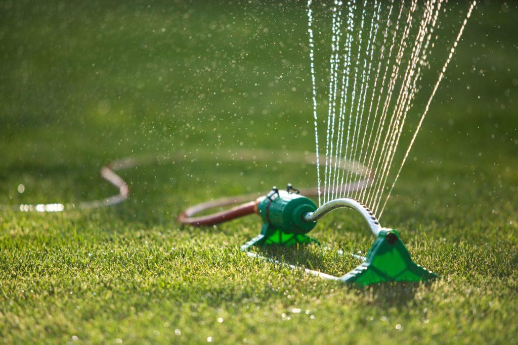 Rasenfläche mit Wasser besprenkelt