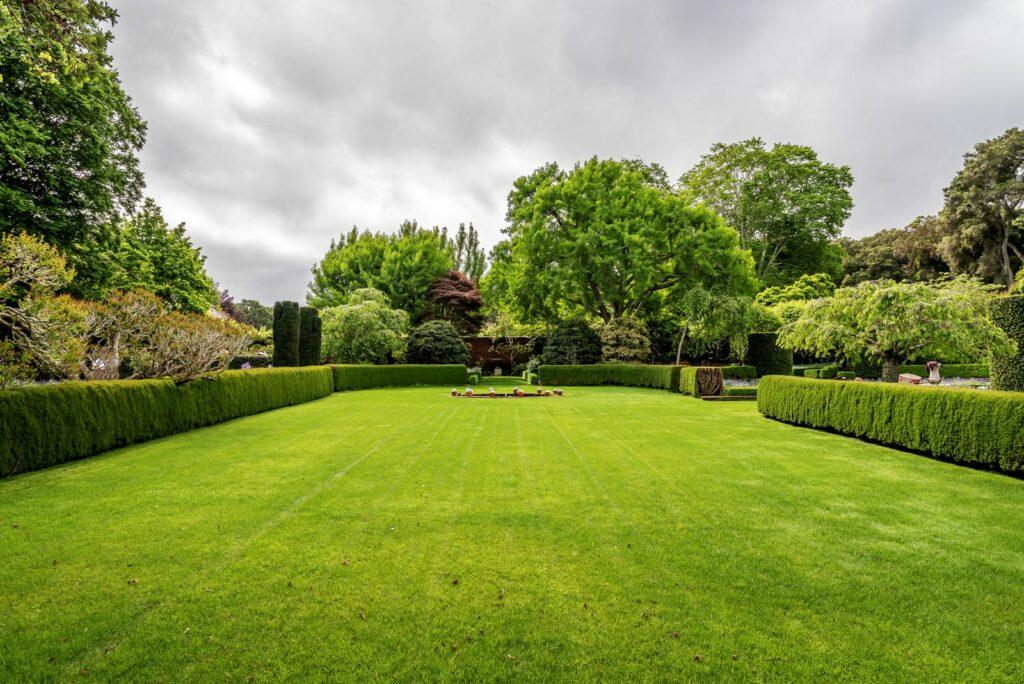 Rasenfläche in englischem Garten