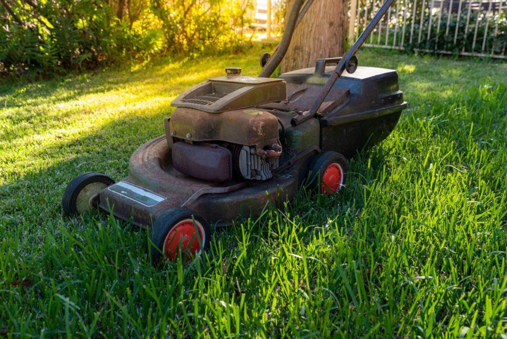 Rasenmäher auf Rasen in Schatten