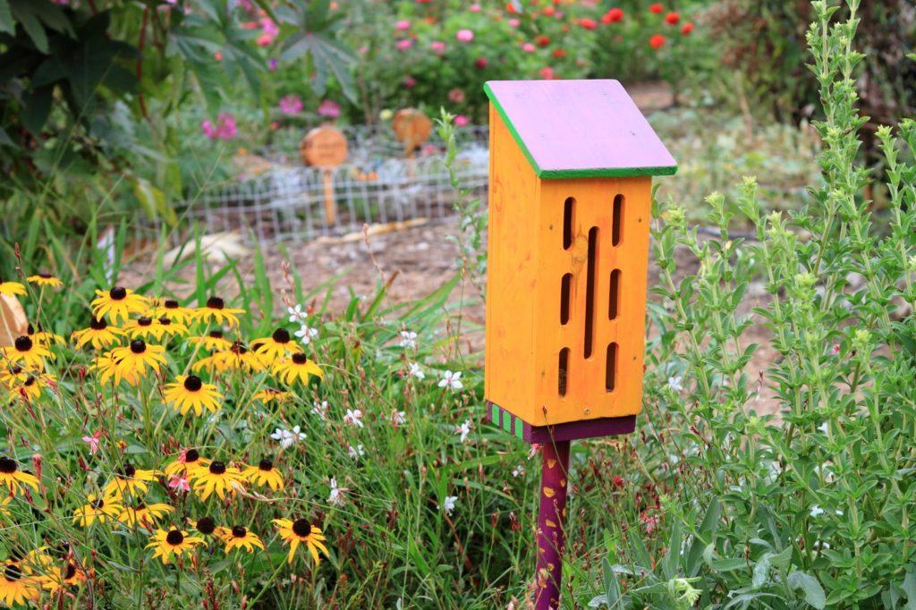 Schmetterlingsaus in Garten