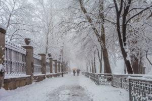 Verschneiter Weg Mit Spaziergängern