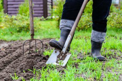 Humusaufbau im Garten: Deshalb wirkt er sich positiv aufs Klima aus