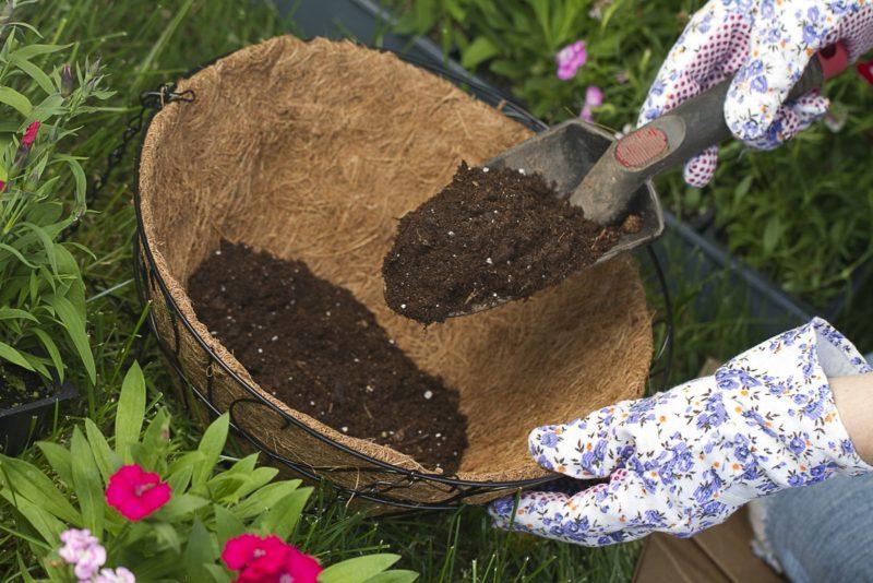 Erde Wird In Einen Hängekorb Für Blumen Gefüllt