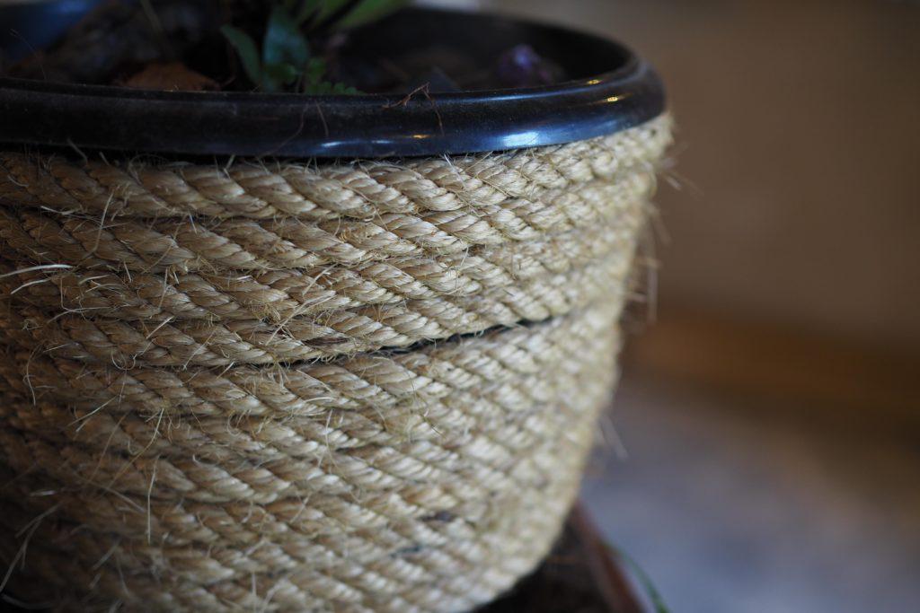 Upcycling: Sisal-Blumentöpfe für fleischfressende Pflanzen (DIY)