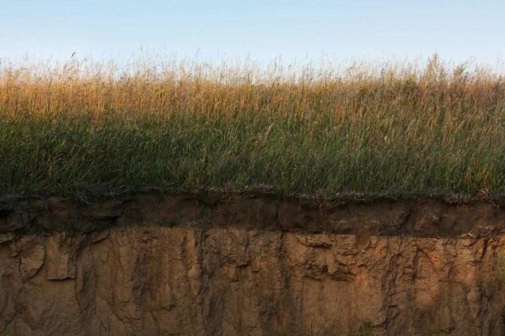 Querschnitt von verschiedenen Bodenschichten