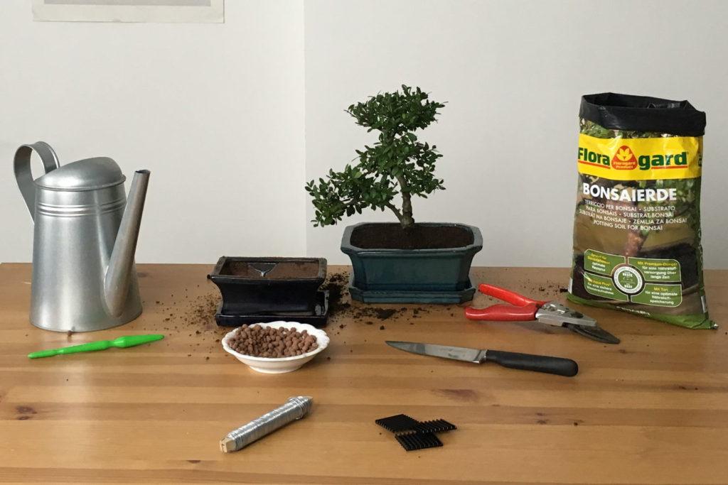 Materialien zum Bonsai-Umtopfen auf einem Tisch