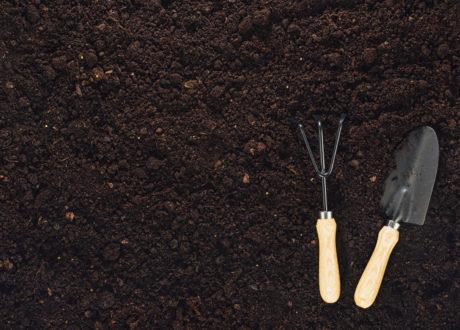 Gartenwerkzeuge Liegen Auf Gartenerde