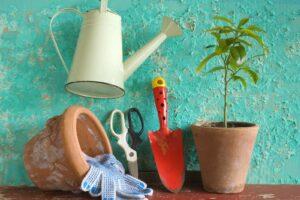 Gartengeräte Neben Einer Pflanze Im Topf
