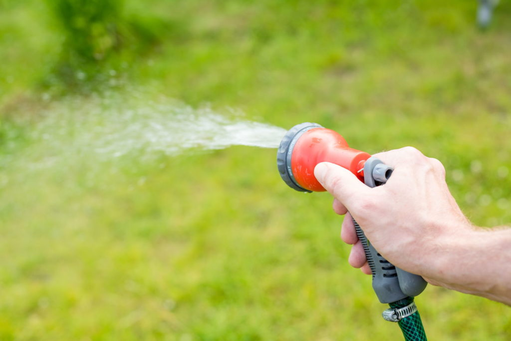Rasen wird mit Gartenschlauch bewässert